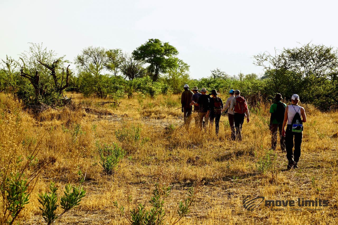 Zwei Tage im Delta des Okavango in Botswana - Pirschwanderung - movelimits.de