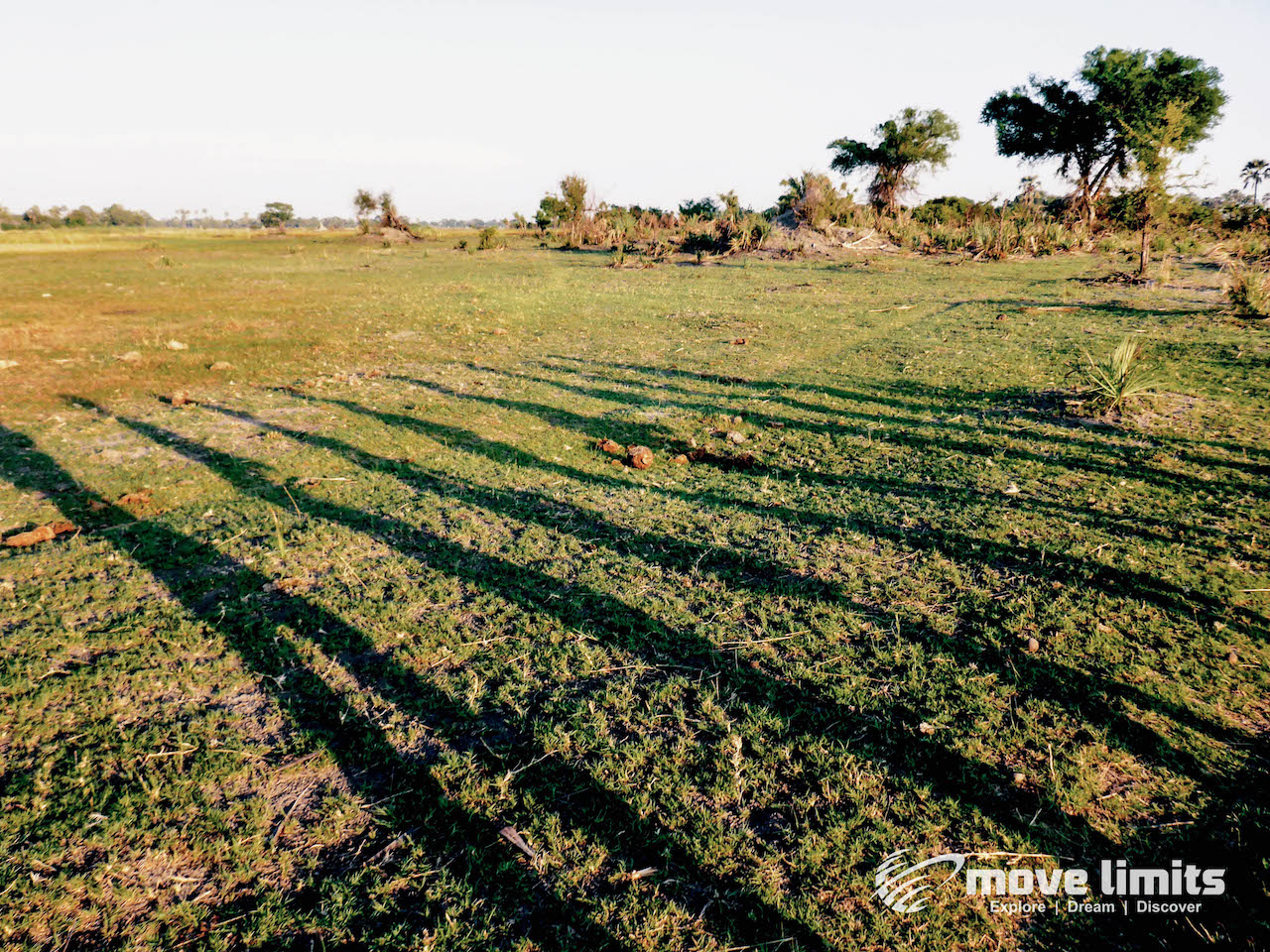 Zwei Tage im Delta des Okavango in Botswana - Schatten am Morgen - movelimits.de
